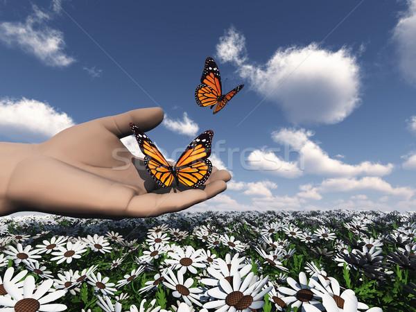 La nature belle papillon main jardin Photo stock © njaj
