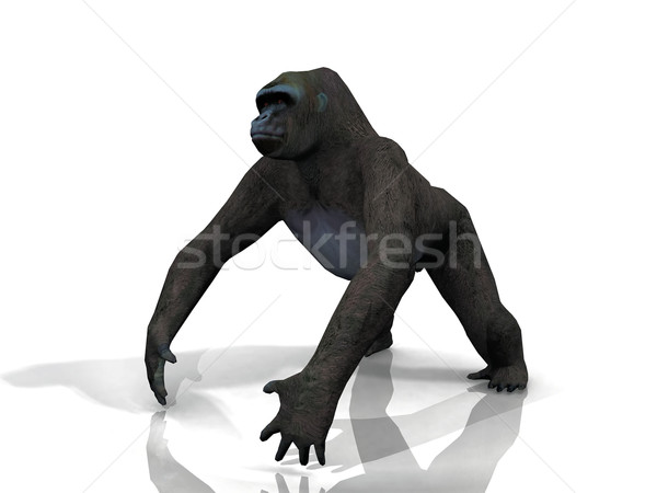 a gorilla on a white background Stock photo © njaj