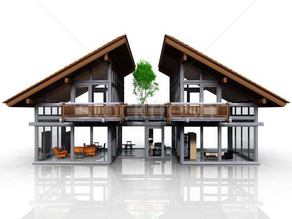 my house Stock photo © njaj
