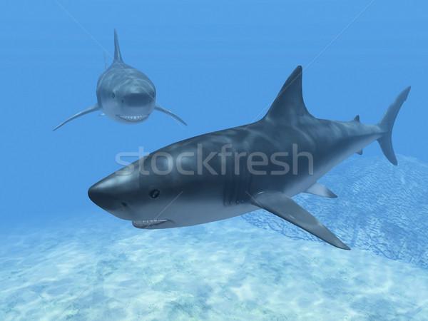 Azul água mar oceano subaquático Foto stock © njaj