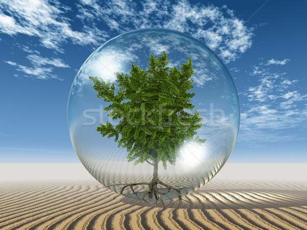 ginkgo  biloba in a bubble and Sky Stock photo © njaj