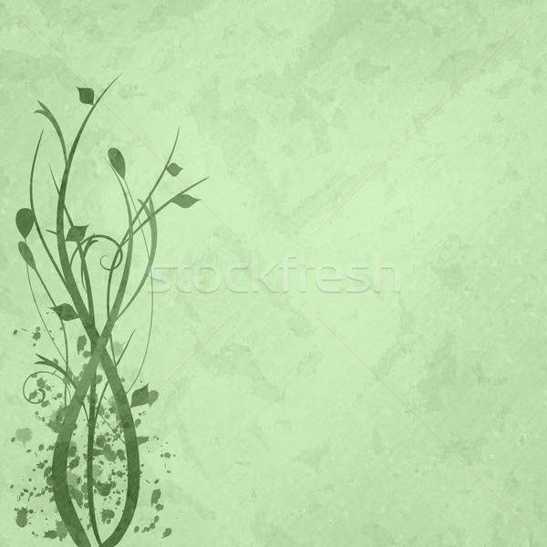 Zielone kwiatowy obraz tekstury wiosną charakter Zdjęcia stock © nmarques74