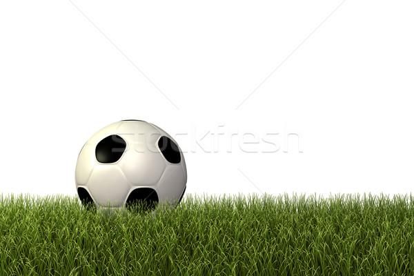 Stock fotó: Futballabda · futball · kép · zöld · fű · fű · futball