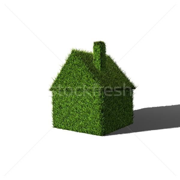 Trawy domu obraz 3D zielona trawa charakter Zdjęcia stock © nmarques74