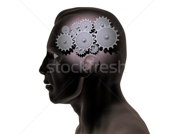 Mózgu narzędzi obraz wewnątrz sztuki edukacji Zdjęcia stock © nmarques74