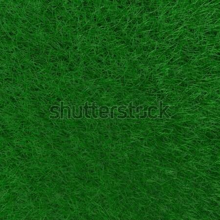 Zielona trawa tle obraz dziedzinie trawy wiosną Zdjęcia stock © nmarques74