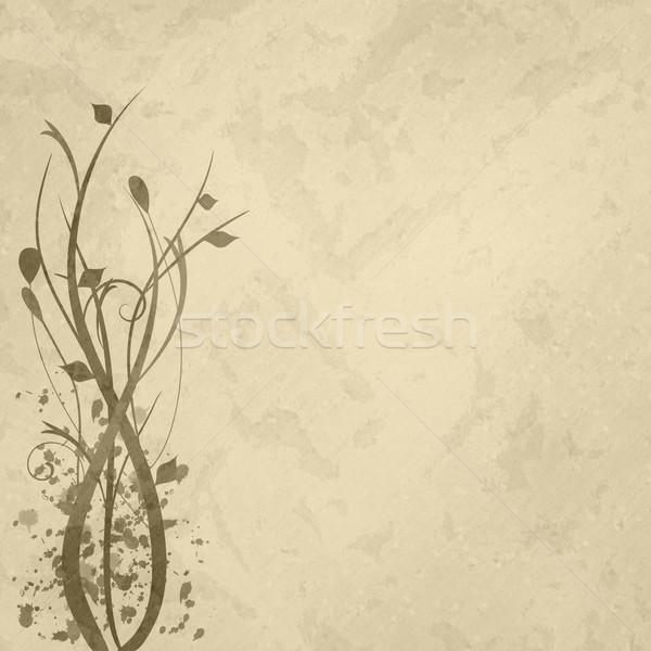 Brązowy kwiatowy obraz kwiat wiosną charakter Zdjęcia stock © nmarques74