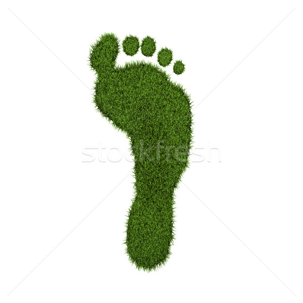 Green Grass Footprint Stock photo © nmarques74