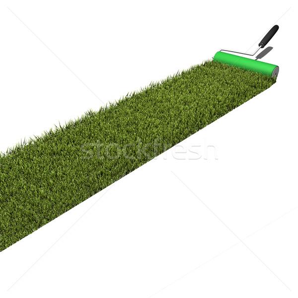 Trawy farby obraz zielona trawa odizolowany biały Zdjęcia stock © nmarques74