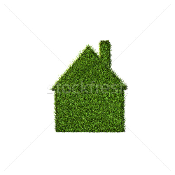 Grass House Stock photo © nmarques74