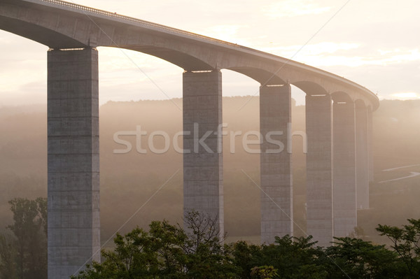 Large highway viaduct ( Hungary) Stock photo © Nneirda