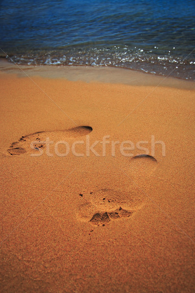 footstep Stock photo © Nneirda