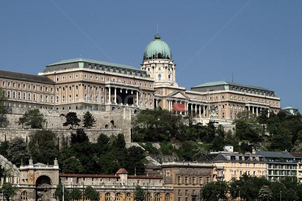 城 ブダペスト 日光 建設 壁 木 ストックフォト © Nneirda