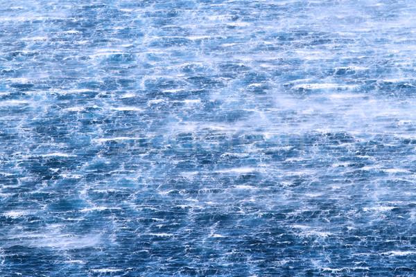 Raging sea with furious waves Stock photo © Nneirda