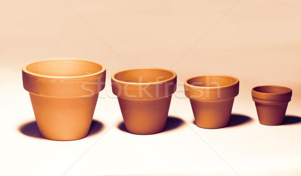 Flowerpots Stock photo © Nneirda
