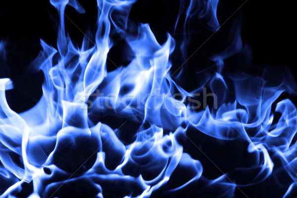 Blue fire Stock photo © Nneirda
