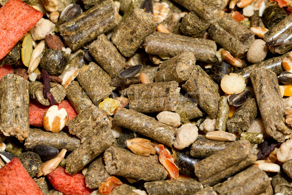 Hámster alimentos foto mixto roedor Foto stock © Nneirda