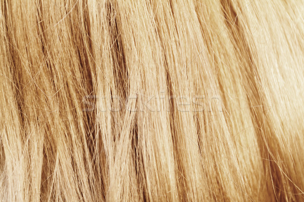 Capelli biondi capelli texture primo piano foto Foto d'archivio © Nneirda