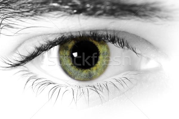 Ogen oog gezicht licht mannen Stockfoto © Nneirda