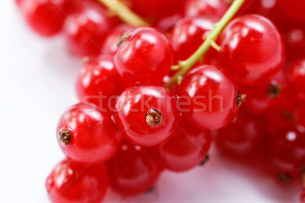 Rojo grosella aislado blanco frutas verano Foto stock © Nneirda