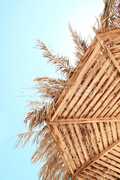 Beach parasols - Egypt Stock photo © Nneirda