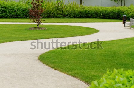 Winding path through Stock photo © Nneirda