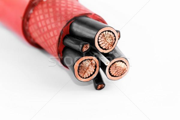 High voltage cable Stock photo © Nneirda