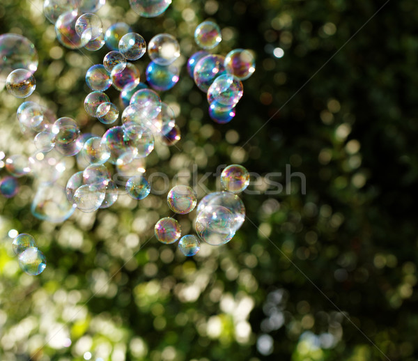 Zeepbellen regenboog bubbels bubble blazer water Stockfoto © Nneirda