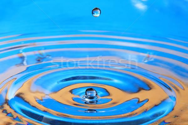 Water drop  Stock photo © Nneirda