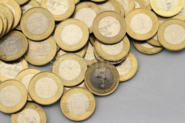 Hungarian forint Stock photo © Nneirda