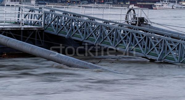 Duna Budapest fotó áradás textúra fa Stock fotó © Nneirda