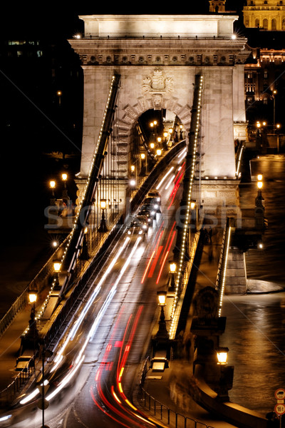 Openbaar vervoer hangbrug nacht Boedapest water stad Stockfoto © Nneirda