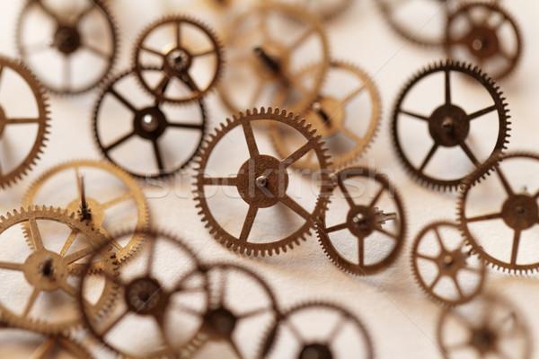 Kicsi alkatrészek óra részlet helyreállítás munka Stock fotó © Nneirda