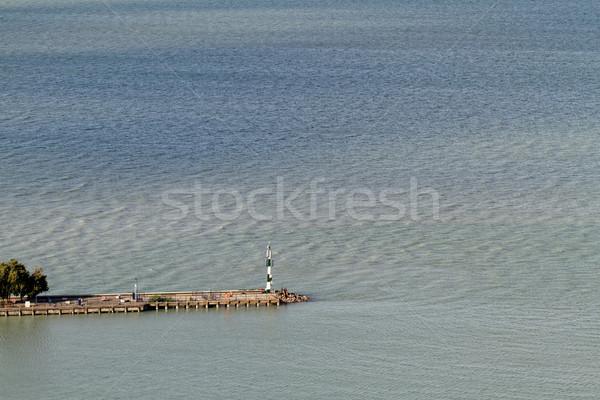 Meer Balaton foto Hongarije boom natuur Stockfoto © Nneirda