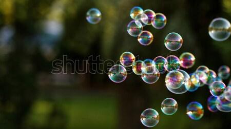 Pompas de jabón arco iris burbujas burbuja soplador diseno Foto stock © Nneirda