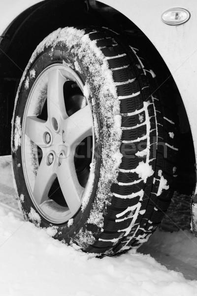 Tél autógumi közelkép autók autógumik út Stock fotó © Nneirda