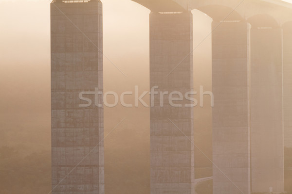 Large highway viaduct ( Hungary) Stock photo © Nneirda