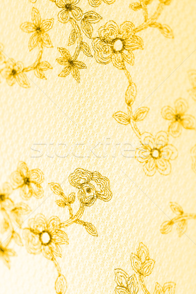 Special lace Stock photo © Nneirda