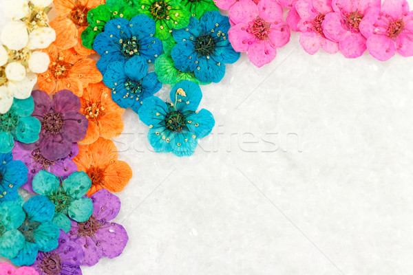 Décoratif montage coloré séché fleurs du printemps bleu Photo stock © Nneirda