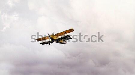 Plane on the sky Stock photo © Nneirda