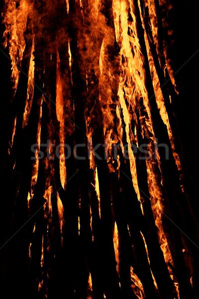 火災 美しい キャンプ 暗い 1泊 芸術 ストックフォト © Nneirda