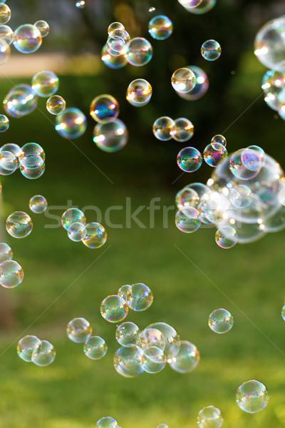 Soap bubbles Stock photo © Nneirda