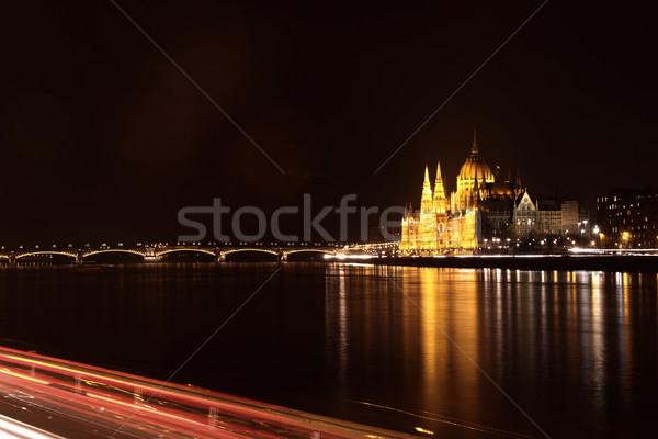 Budapest Stock photo © Nneirda