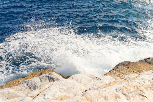 The sea Stock photo © Nneirda