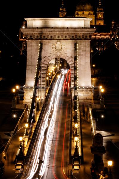 Toplu taşıma asma köprü gece Budapeşte su şehir Stok fotoğraf © Nneirda
