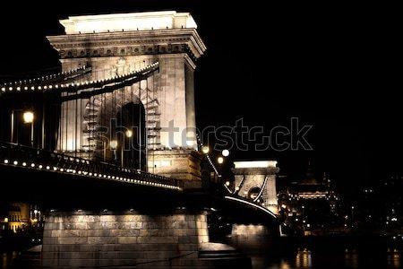 The Chain Bridge (detail) Stock photo © Nneirda