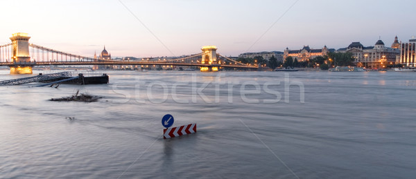 Danúbio Budapeste foto inundação textura árvore Foto stock © Nneirda