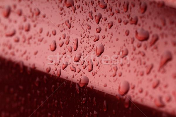 Water drops Stock photo © Nneirda