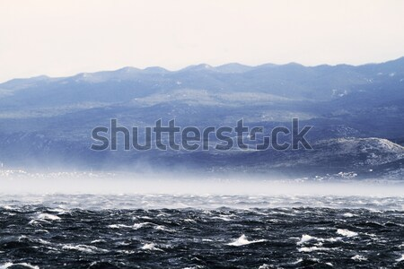Raging sea with furious waves Stock photo © Nneirda