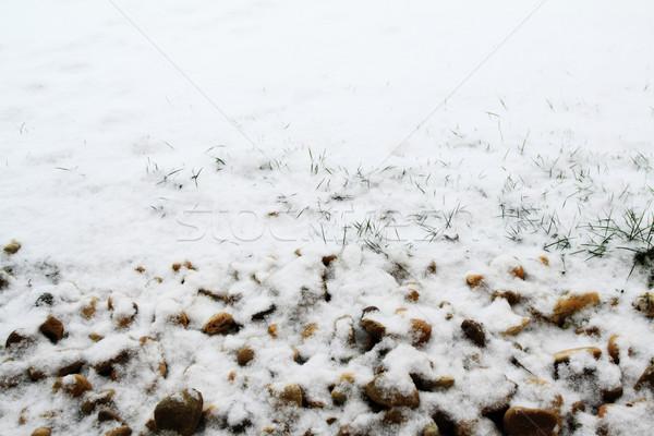 First snow Stock photo © Nneirda